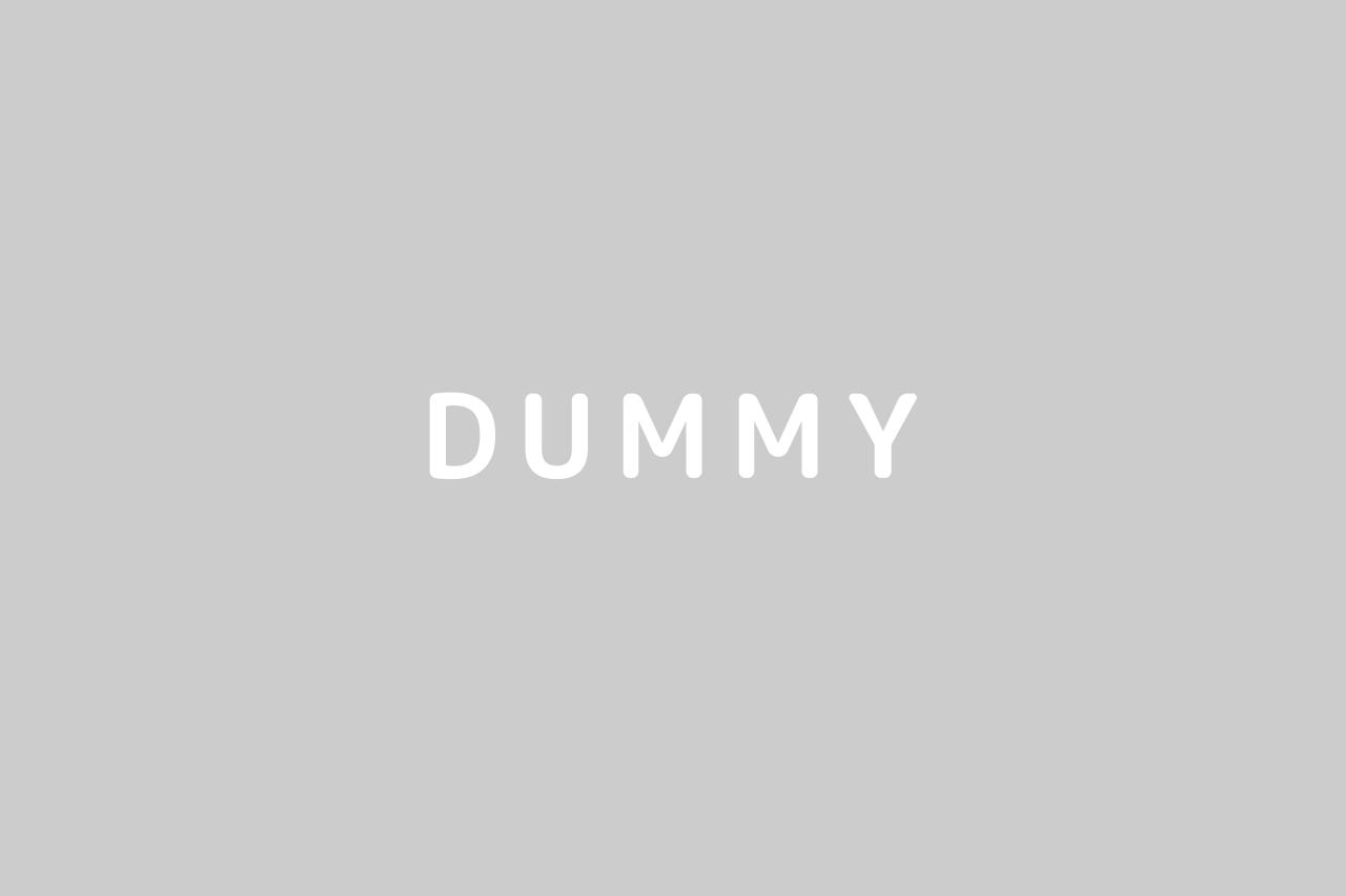 dummy01